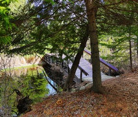 Arching Pines Bed & Breakfast - Haliburton